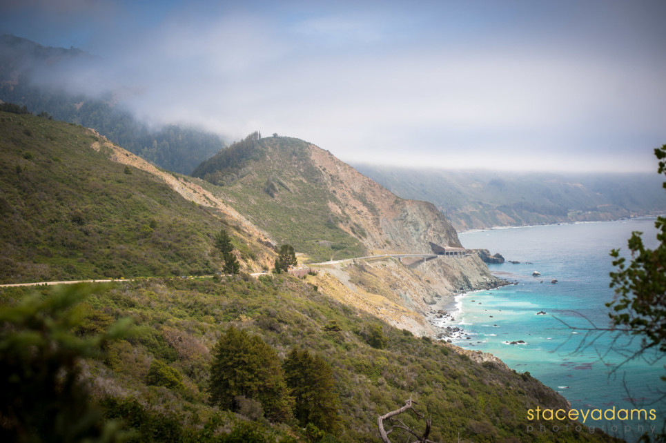 Big Sur Wedding 29