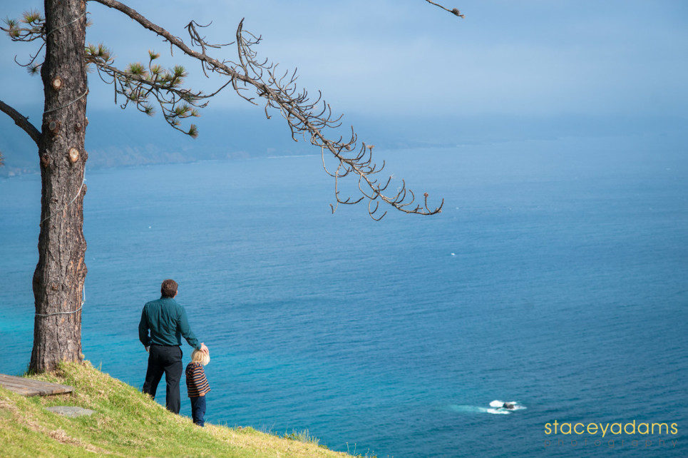 big sur wedding 13