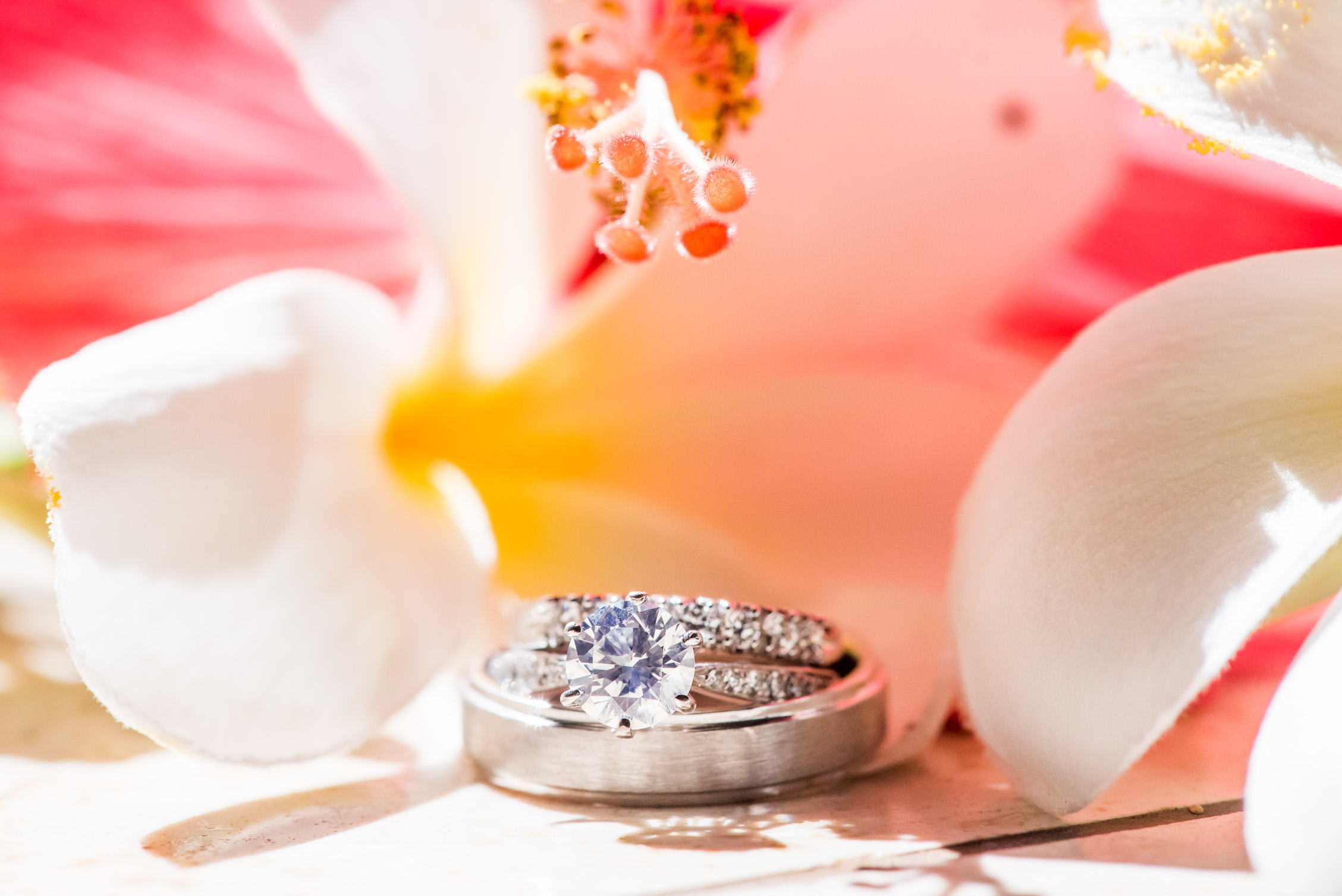 close up of wedding rings and flowers