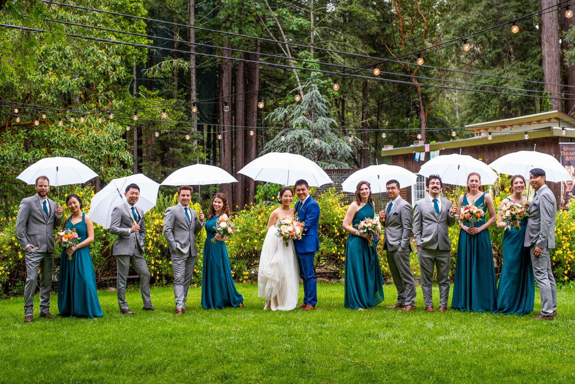 Large wedding party in teal and gray on redwoods lawn with string lights
