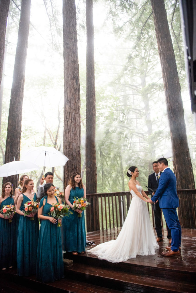 Bride and groom amongst giant redwoods in the rain
