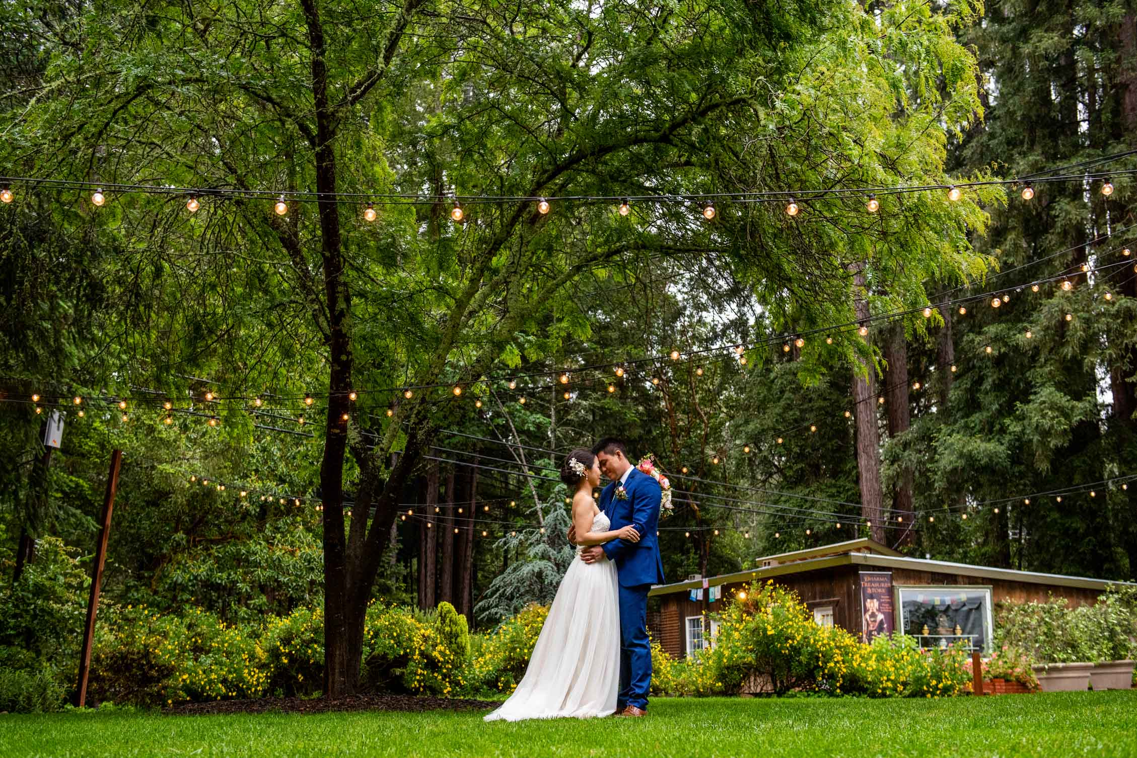 Bride and Groom with green grass and trees in redwood forest