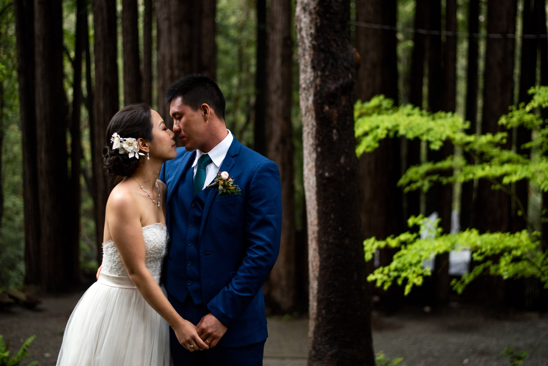 Wedding couple in the redwood forest